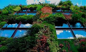 Patrick Blanc i jego miejskie dżungle - Usługi ekosystemów